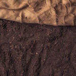 Garden Soil Mix